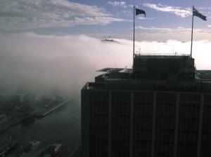 Foggy Sydney