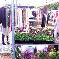 Marrickville Markets_Wordpress_12