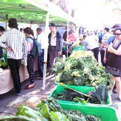 Marrickville Markets_Wordpress_17