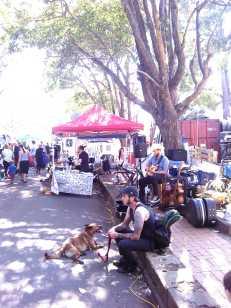 Marrickville Markets_Wordpress_18