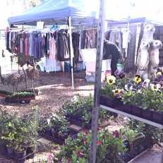 Marrickville Markets_Wordpress_23