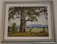 Hunter Valley, NSW Australia