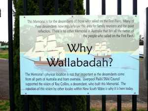 Wallabadah 14