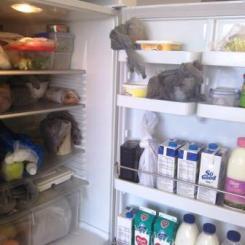 Won't miss: scary workplace kitchen fridges