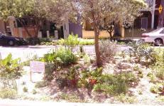 Will miss: Marie's Garden