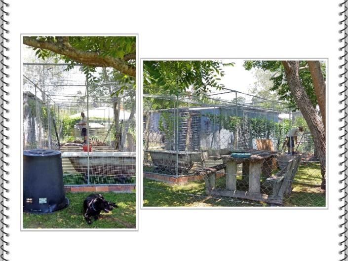 02-garden-collage-1
