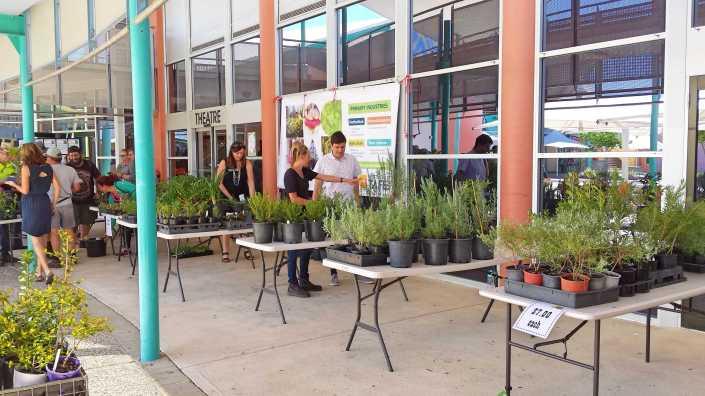 Plant sale.jpg