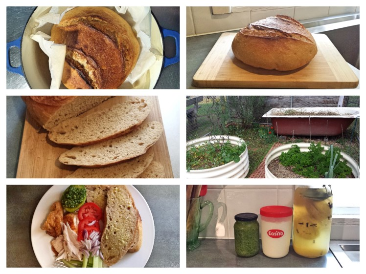 real food_collage