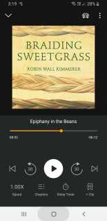 Audible_Braiding Sweetgrass