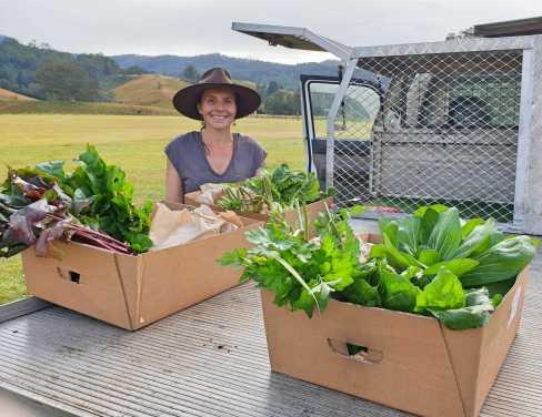 Community... local growers @DollysRun
