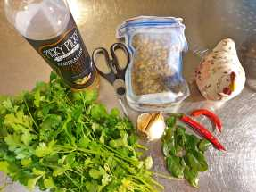 Kitchen_homegrown coriander, chillies and kaffir lime leaves