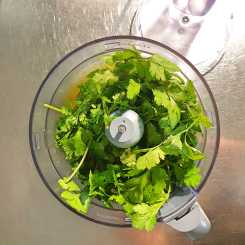 #winter2020 food: the last of the coriander before it became pesto