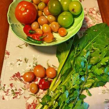 #winter2020 food: garden foraged veggies