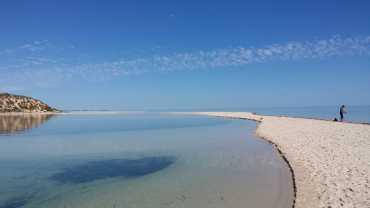 2016 trip: Fishing at Denham, Western Australia