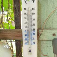 Birthday temperature_40 plus in the shade