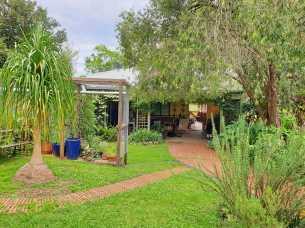 Home Sweet Home: Back garden