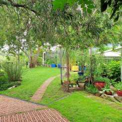 Home Sweet Home: Back yard