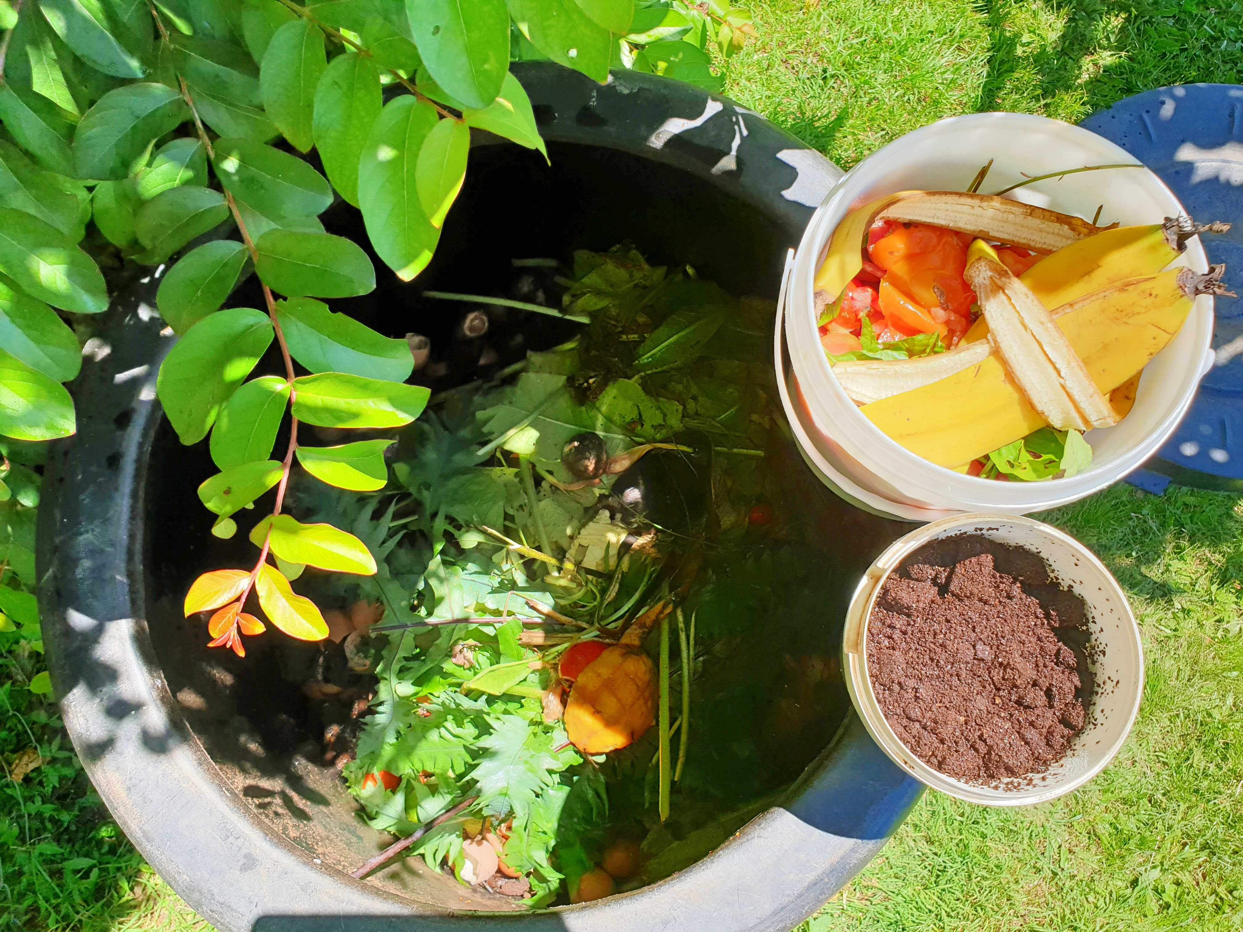 in my garden_02_compost