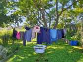 Solar and wind powered laundry drying apparatus.