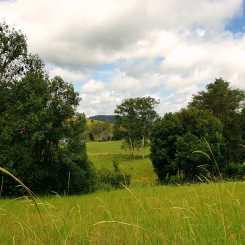 Surrounding farmland.